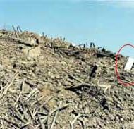 یخچالی در میانِ آوارِ یک ده - زمینلرزه بوئینزهرا (۱۳۸۱)